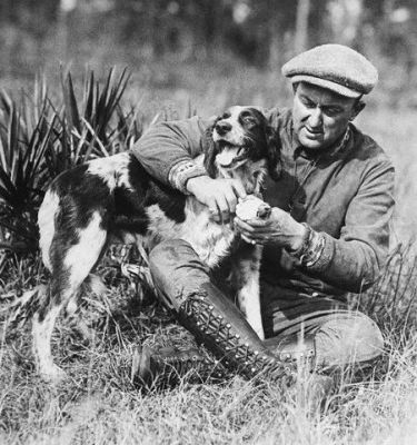 Ty Cobb Removes A Thorn From His Hunting Dog's Paw